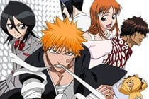 Bleach Sample Image