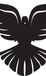 blackdove User Avatar