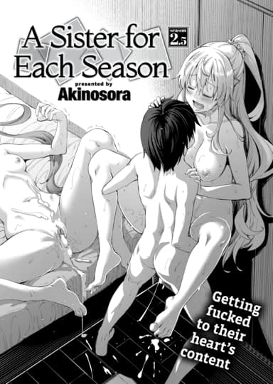 A Sister for Each Season: season2.5 Cover