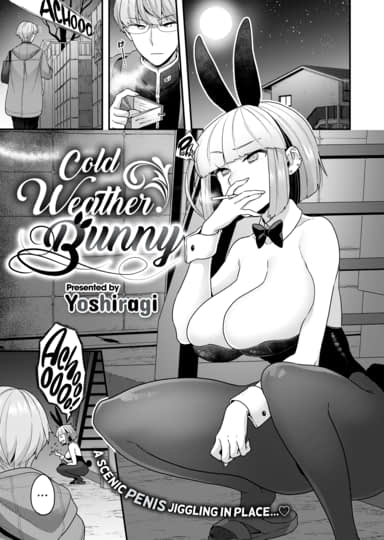 Cold Weather Bunny Cover
