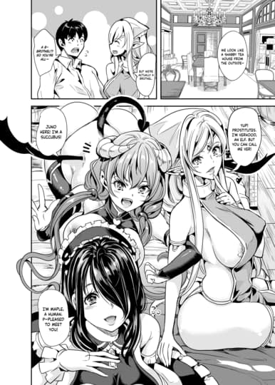 My Harem in Another World Sample