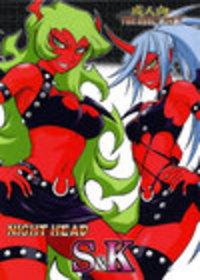 NightHead S&K Cover